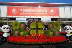 公司员工参观第二届中国国际进口博览会